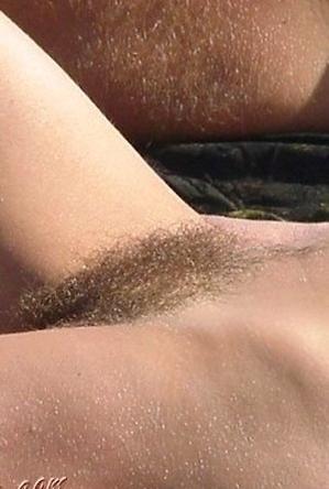close up,on  beach,